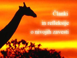 clanki_in_refleksije