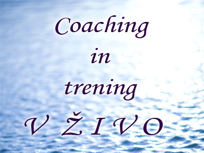 NVC trening in coaching v živo